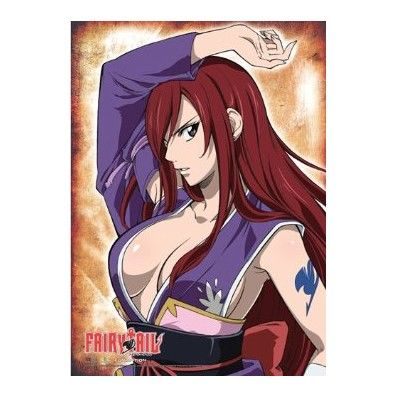 Erza Scarlet Robe of Yuen Wallscroll