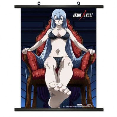 Esdeath Wallscroll