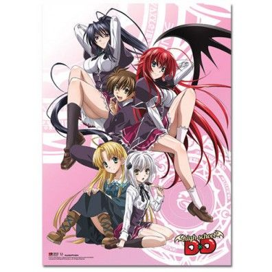 High School DxD - Key Art Wall Scroll
